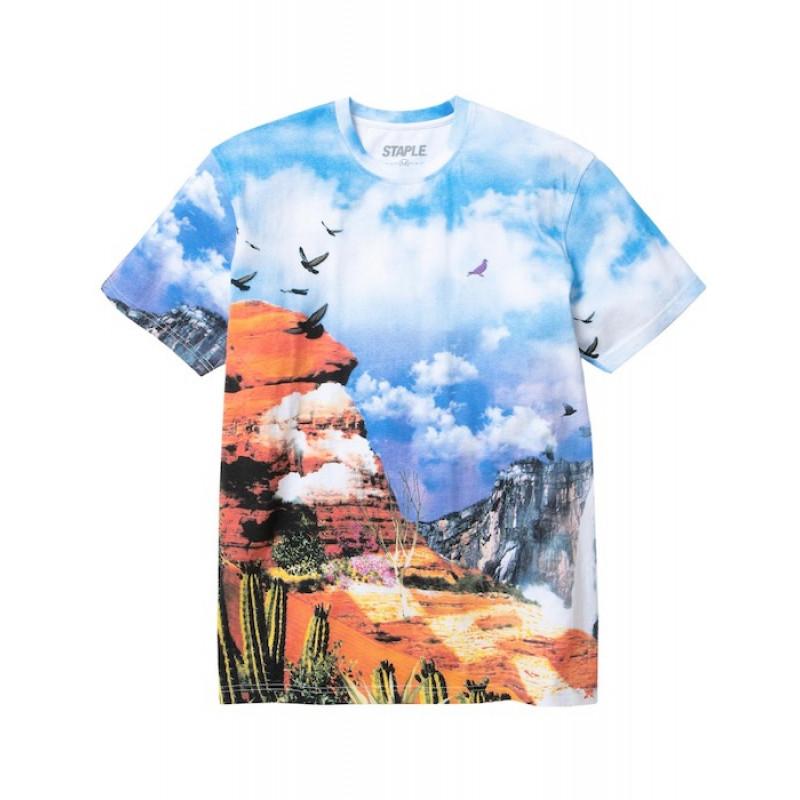 Staple Pigeon - Canyon All Over Print Tee Multi 1