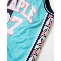 Staple Pigeon - Collegiate Basketball Jersey Teal 6